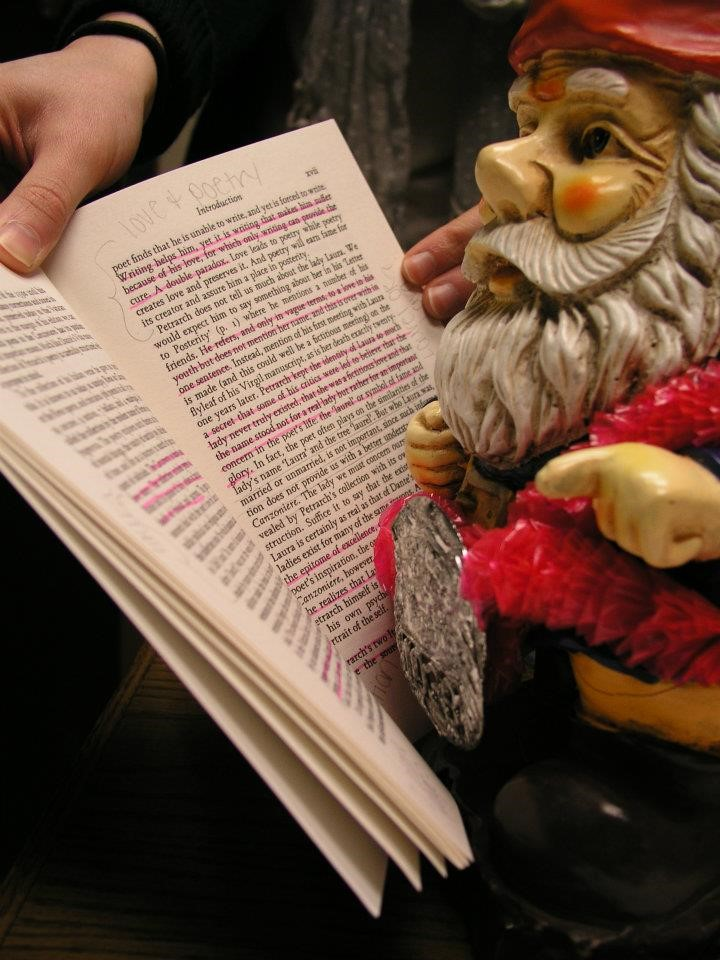 library gnome reading and dressed up