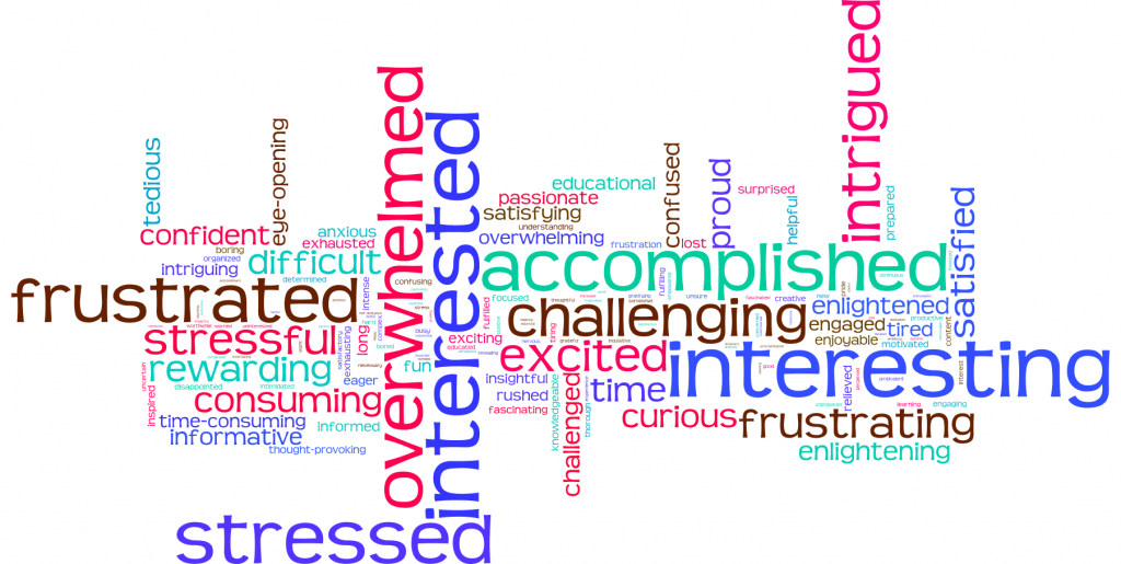 Wordl Cloud of Student's Feelings about Research
